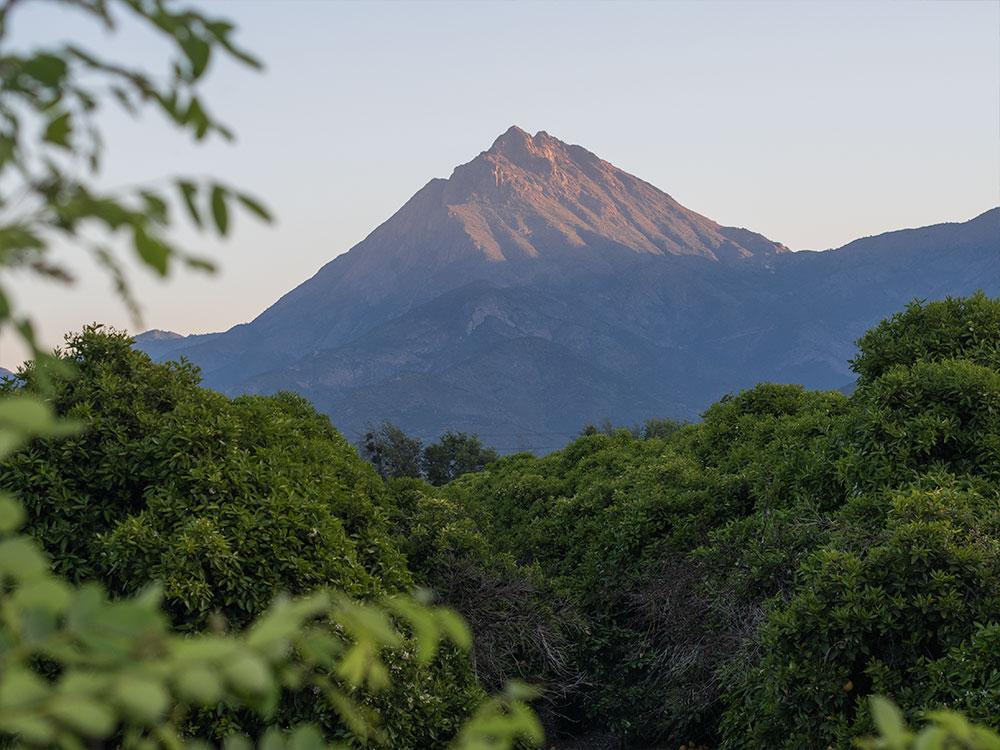 La Campana Mountain