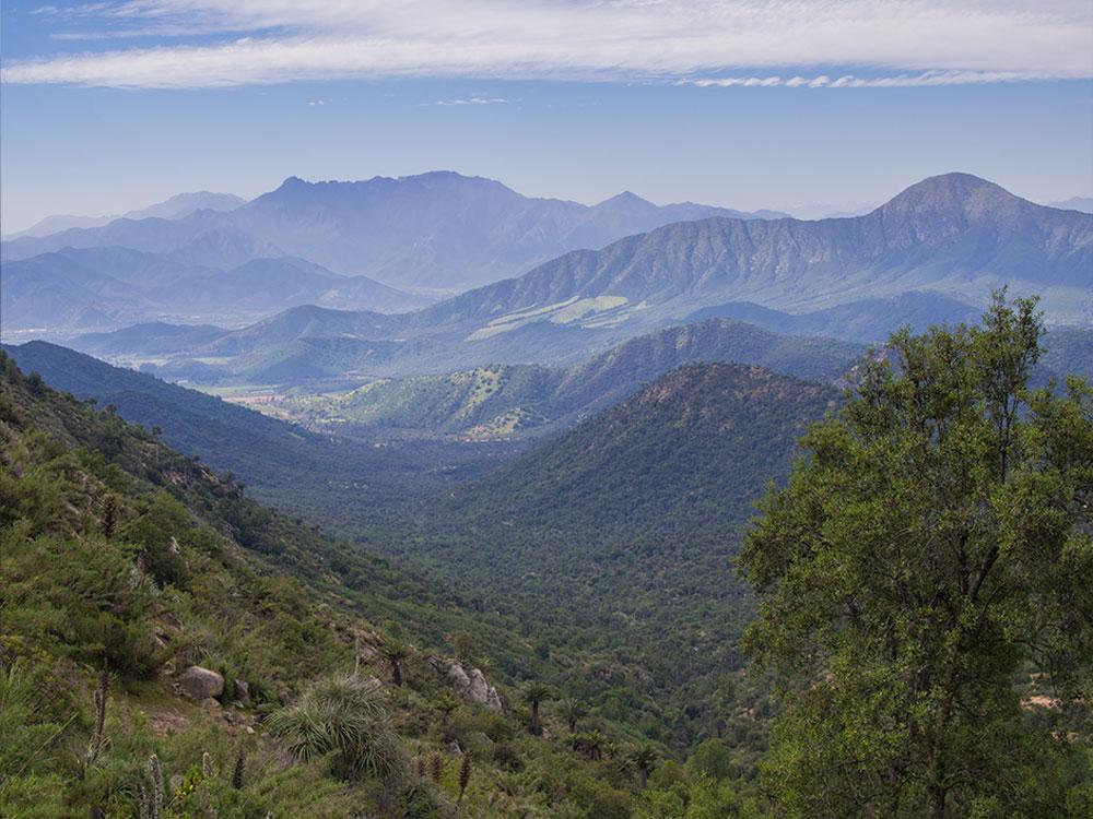 Darwin's Route - Hiking Tours Santiago Chile