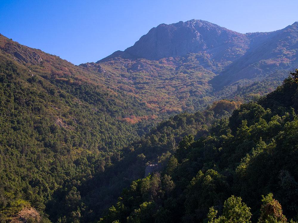 La Campana ascent hiking tour - Chile outdoors