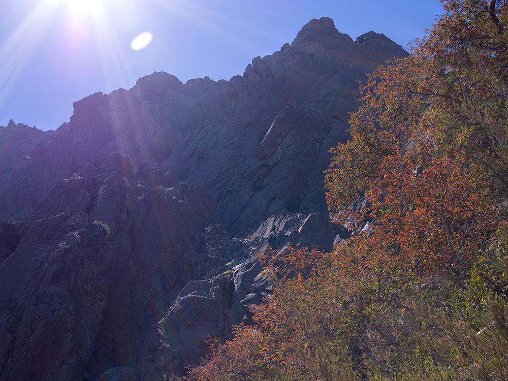 Hiking La Campana near Santiago de Chile