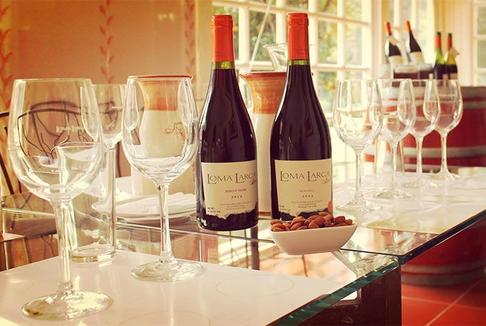 chile-wine-tours-loma-larga-wineyards-06