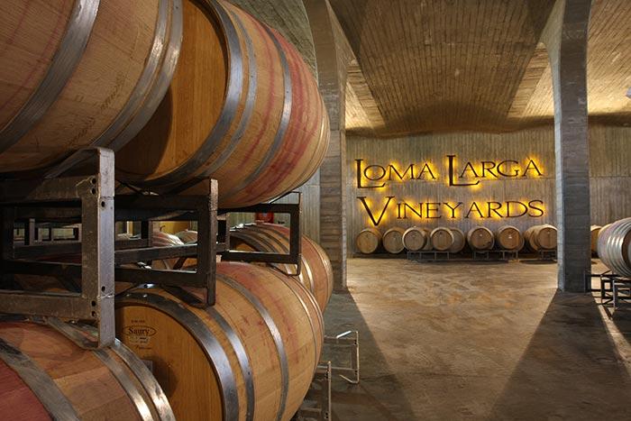 chile-wine-tours-loma-larga-wineyards-09